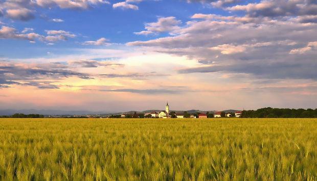 Eine Landschaftsfotografie, unten ein Getreidefeld und oben ein blauer Himmel mit Wolken. In der Mitte ist in der Ferne ein Dorf.